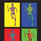 MEDart™ Poster Skeleton, 4 motives, background black, 1002401 [MAPA10Suu], 해부학 차트 및 포스터
