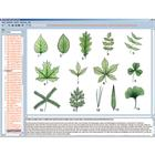Botany in the Classroom, Interactive CD-ROM, 1004294 [W13525], 생물학 소프트웨어