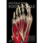 Primal Pictures - Interactive Foot and Ankle, English, 1005845 [W46613], 프라이멀 픽쳐스