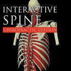 Primal Pictures - Interactive Spine: Chiropractic Edition, English, 1005851 [W46625], 프라이멀 픽쳐스